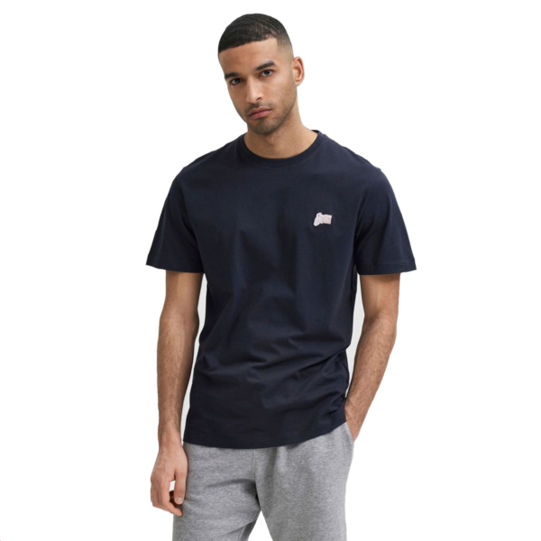 SELECTED Jude Embroidery Tee (16078260-Sky Captain)