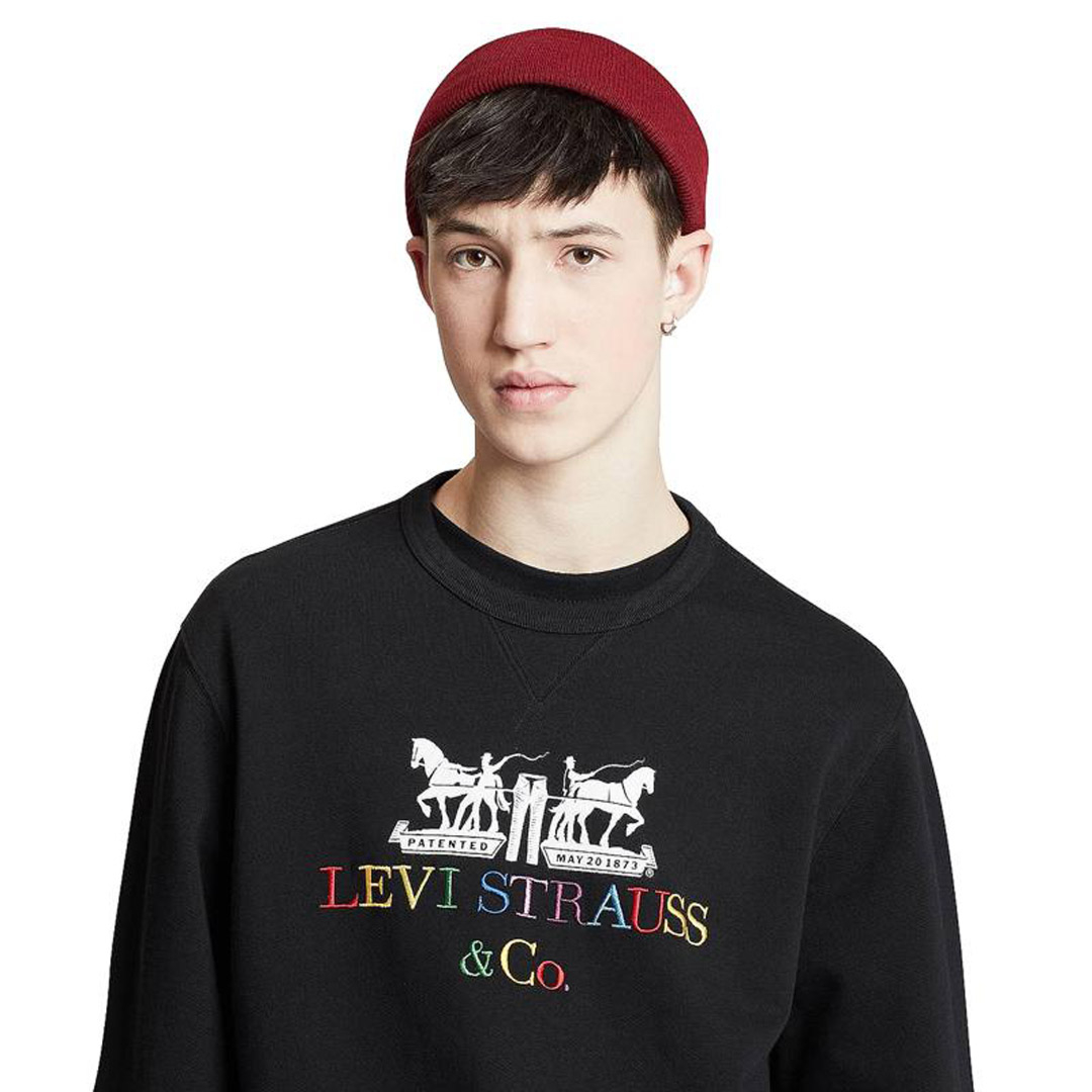 Levi's® Φούτερ Ανδρικό Λογότυπο Μαύρο (17895-0083)